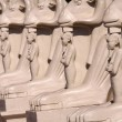 Stock Photo: Egyptistatues