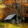 Autumn Scene — Stockfoto