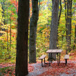Stock Photo: Picnic Table