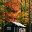 Cabins — Stock Photo