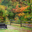 Single Bench — Stock Photo #8146160