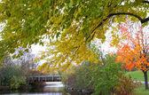 Autumn in Michigan — Stock Photo