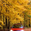 Red car in park — Stock Photo #8155104