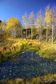 Rocky mountain Landscape — Stock Photo