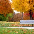 Autumn in the park — Stock Photo #8160208