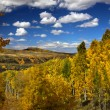 Scenic autumn landscape — Stock Photo #8160470
