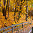 Autumn landscape — Stock Photo #8161674