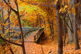 Sonbahar manzara içinde kurulu yürüyüş — Stok fotoğraf
