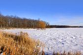 Frozen lake — Foto de Stock