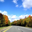 ROAD THROUGH AUTUMN — Stock Photo