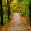 Autumn Walk Way - Stock Photo