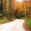 Road Through Autumn Trees — Stock Photo