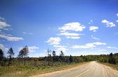 Sunny Highway — Stock Photo