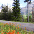 Going to the sun road — Stock Photo #8496259