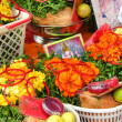 Indian Pooja Items — Stock Photo