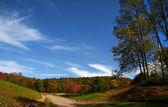 Autumn time trees — Stock Photo