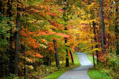 Autumn bike trail — Stock Photo