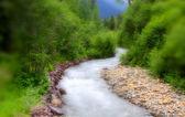 Fresh water stream — Stock Photo