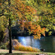 Autumn Scene — Stock Photo #8698414