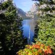 Stock Photo: Jenny lake