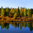Autumn landscape — Stock Photo #8767801