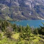 Glacier national park — Stockfoto #8768058