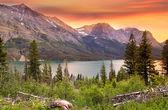 Parque nacional glacier — Foto Stock