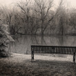 Empty Bench By The Pond — Stock Photo