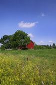 Scenic landscape — Stock Photo