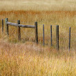 Stock Photo: Fence in prairies