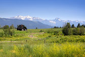 Scenic landscape in montana — Stock Photo