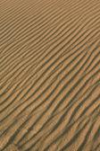 Kum çizgiler — Stok fotoğraf