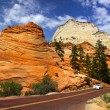 Scenic drive in Zion national park — Stock Photo