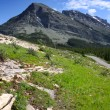 Glacier national park — Stock Photo #9017492