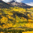 San Juan Mountains — Stock Photo #9017553