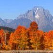 Stock Photo: Grand Tetons national mountain range
