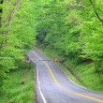 Scenic drive — Stock Photo