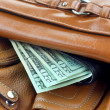 Fat wallet Concept of rich — Stock Photo #9115868