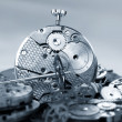 Watch mechanism and accessories — Stock Photo