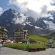 Grindelwald in the suisse alps during summer, — Stock Photo