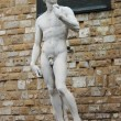 Statue of David — Stock fotografie #10093980