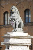The Florentine lion — Stock Photo