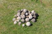 Boulets de pierre blanches — Photo