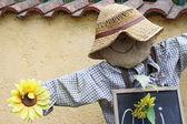 Scarecrow — Stockfoto