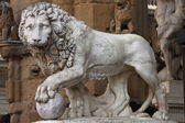 Lion in Florence — Stock Photo