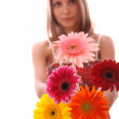 Woman with flower, isolated — Stock Photo