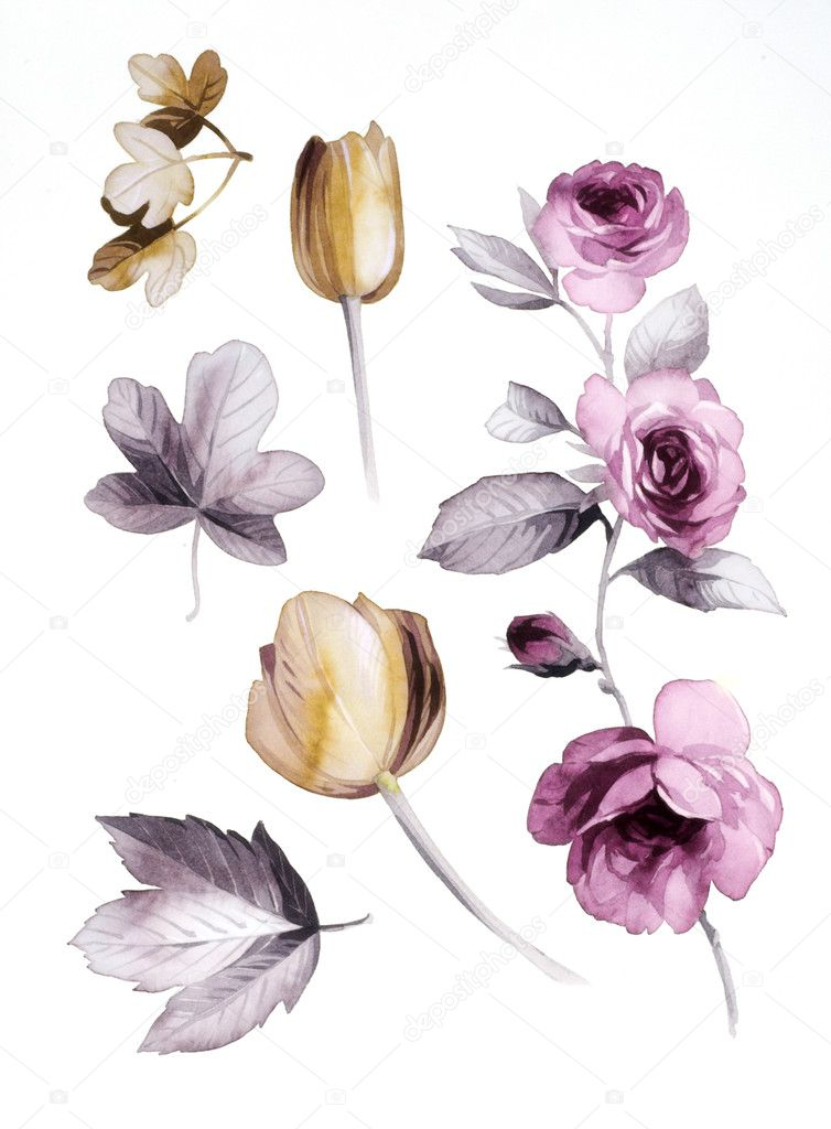 Color illustration of flowers in watercolor paintings — Stock Photo #9219227