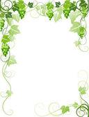 Grapes frame — Stock Vector
