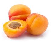 Apricot — Stock Photo