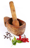 Mortar with viburnum and cloves — Stock Photo